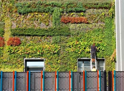 jardines verticales naturales madrid