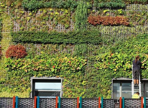 jardines verticales preservados madrid