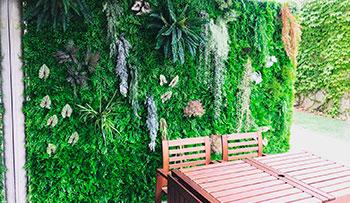 Jardin vertical en Las Rozas