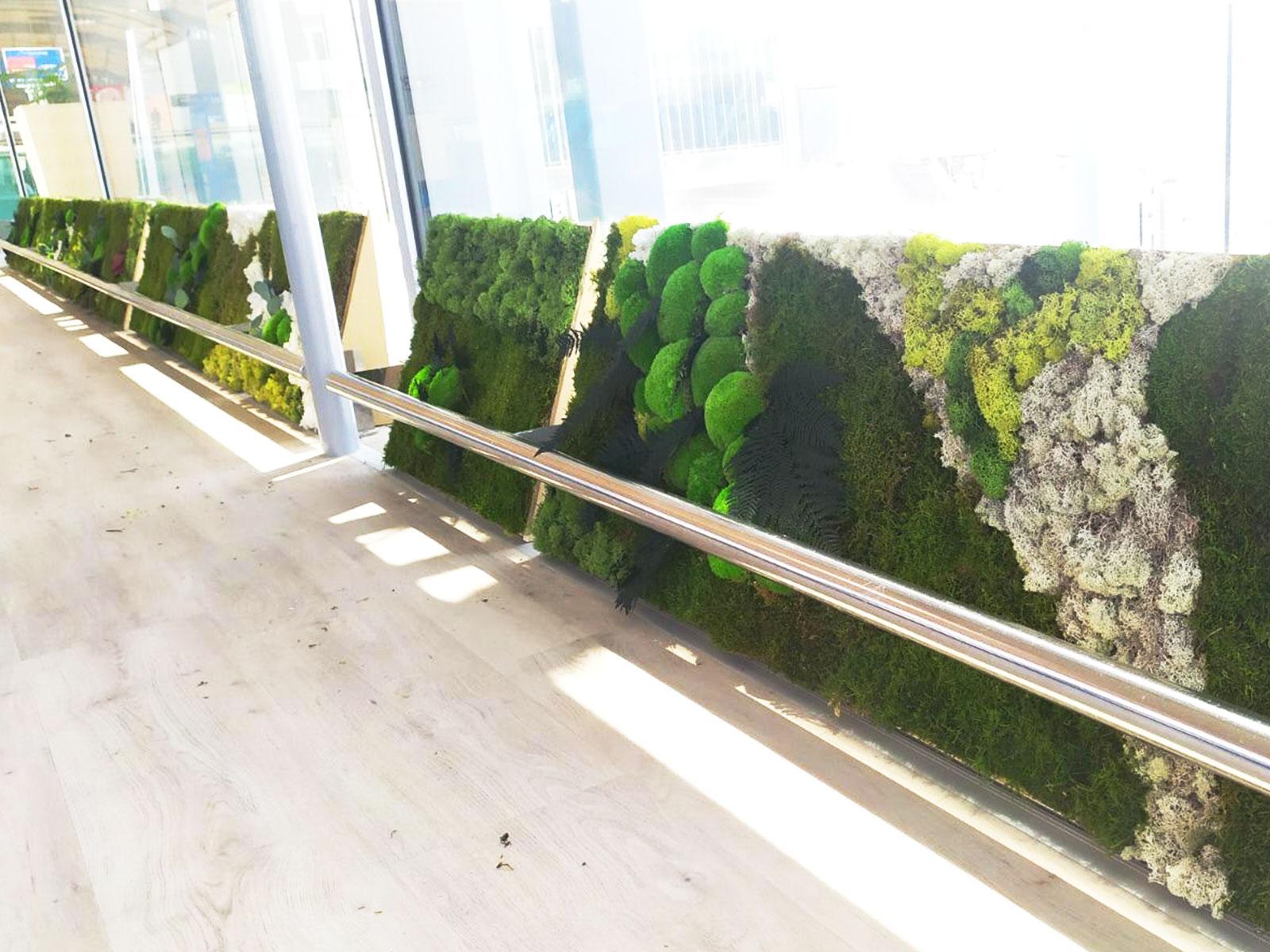 Jardin vertical en Aeropuerto de Alicante - Elche